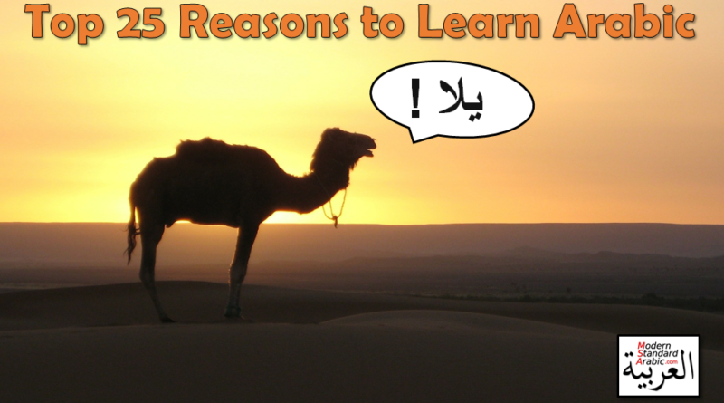 motivation to learn arabic modern standard arabic