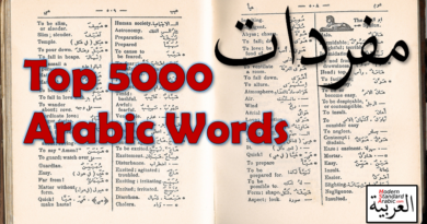 vocab top 5000 arabic words learn msa
