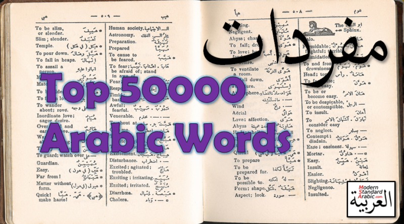 vocab top 50000 arabic words learn study msa